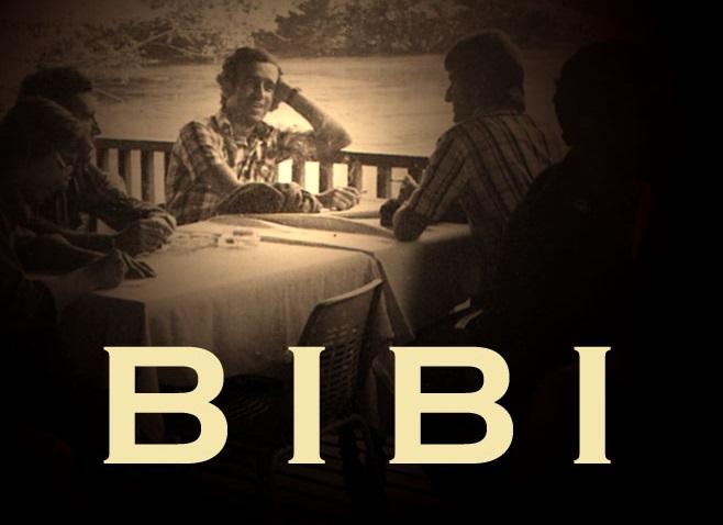 BIBI-A1